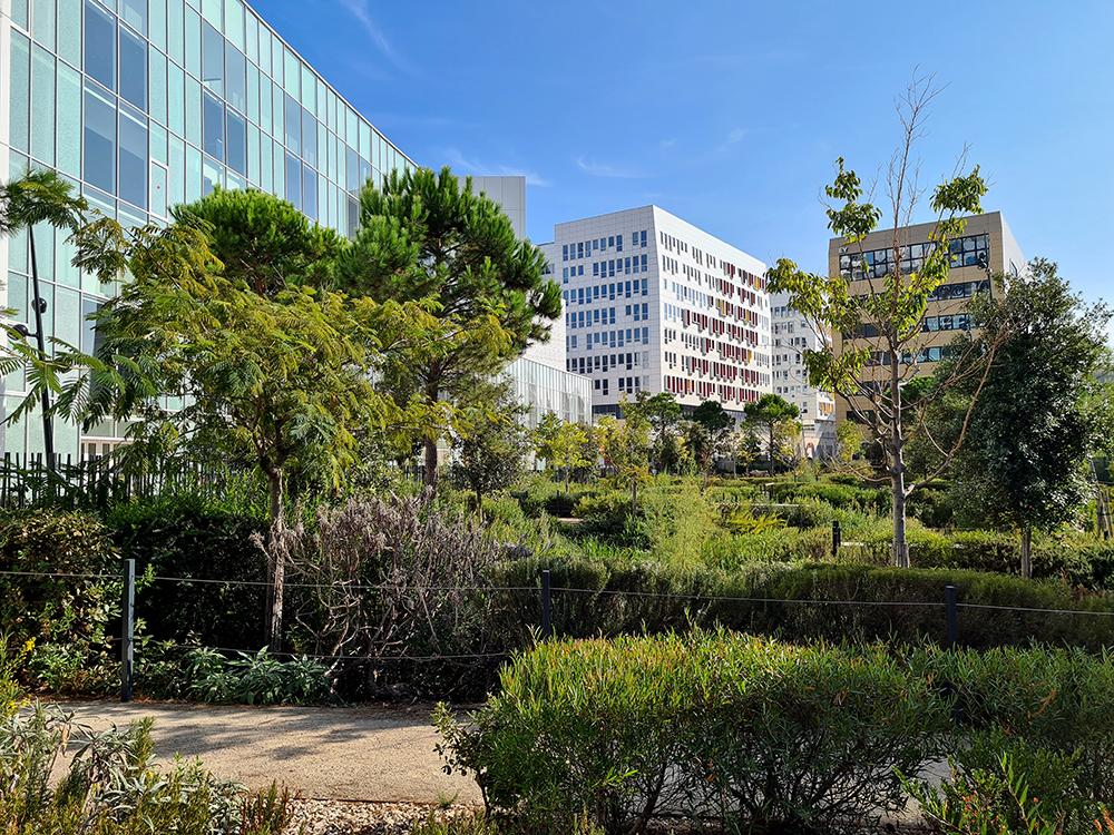 Jardin d'Arenc, privé mais public